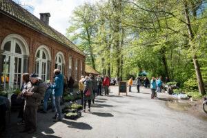 Kleine zaden, kruiden en plantenmarkt te Dodoenstuin, Park Schilde @ Dodoenstuin, Park Schilde